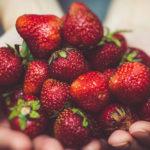 De godaste svenska jordgubbarna är märkta med Svenskt Sigill