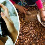 Zagora Simply Organic: Skönhet som stöttar marockanskt kvinnokooperativ