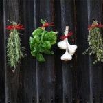 Så här skapar du en köksträdgård i krukor