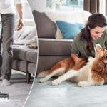 Har du husdjur och vill underlätta städandet? Bissell är din räddning